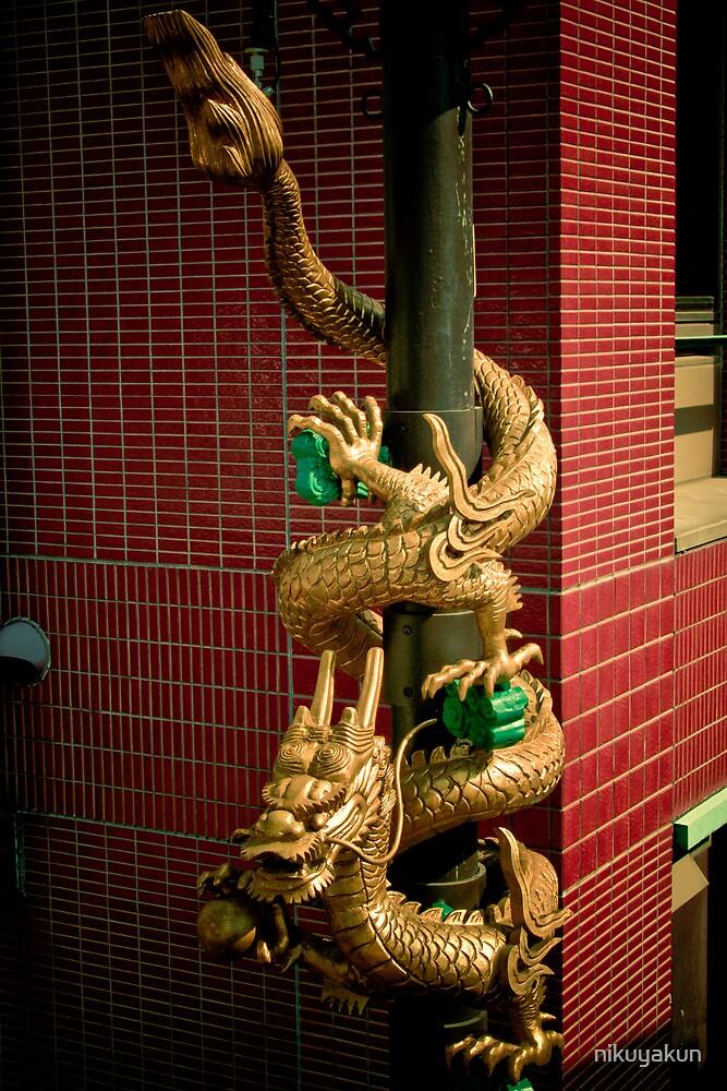 Exit the Dragon. by nikuyakun