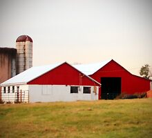 Red And White Barn by Cynthia48