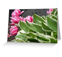 Pink flowers with gree leaves Greeting Card
