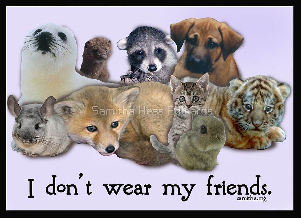 i don't wear my friends by Samitha Hess Edwards
