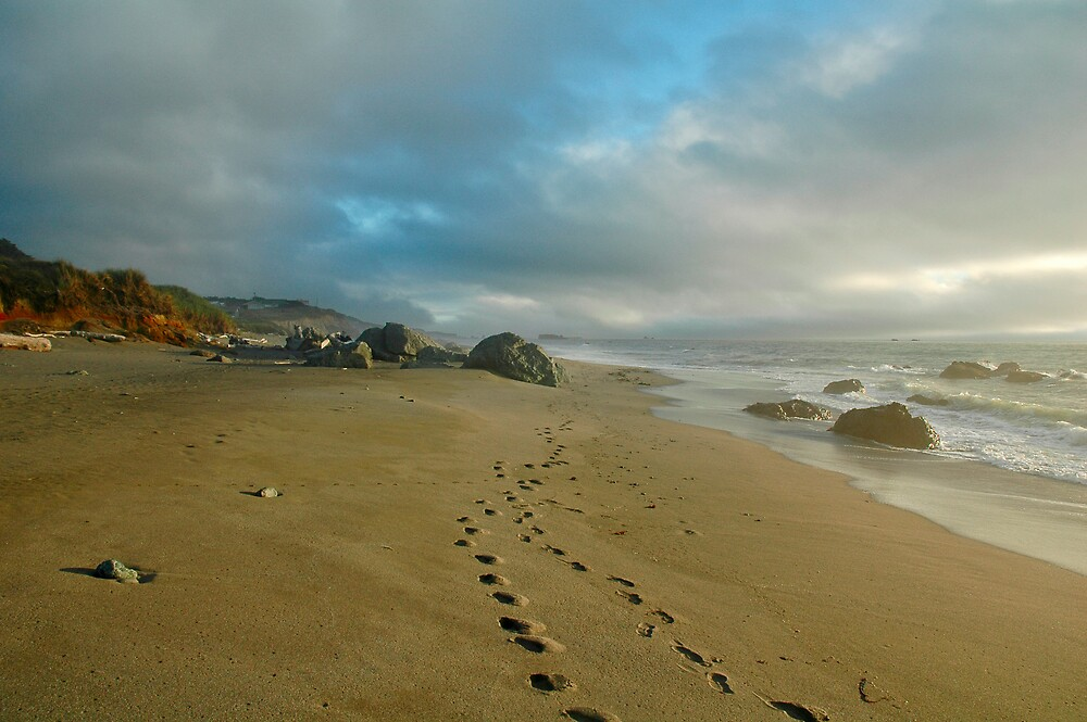 A Walk on the Beach by Krys Squires