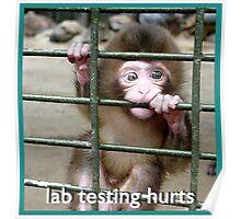 lab Testing Hurts Poster