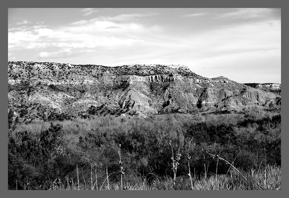 Views Of The Panhandle Of Texas by h2recovery