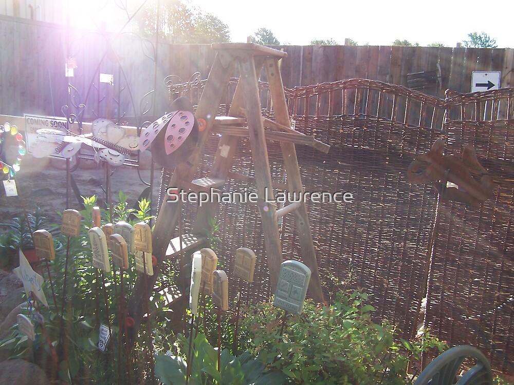 Garden Ladder by Stephanie Lawrence