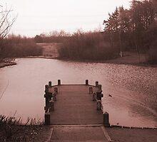 Lake by Matt Roberts