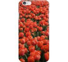 Highlands Tulips iPhone Case/Skin