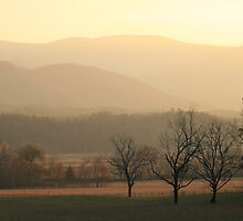 Same Sunset by ddancernc