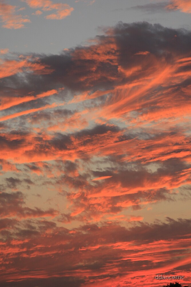 Sky on Fire by ddancernc