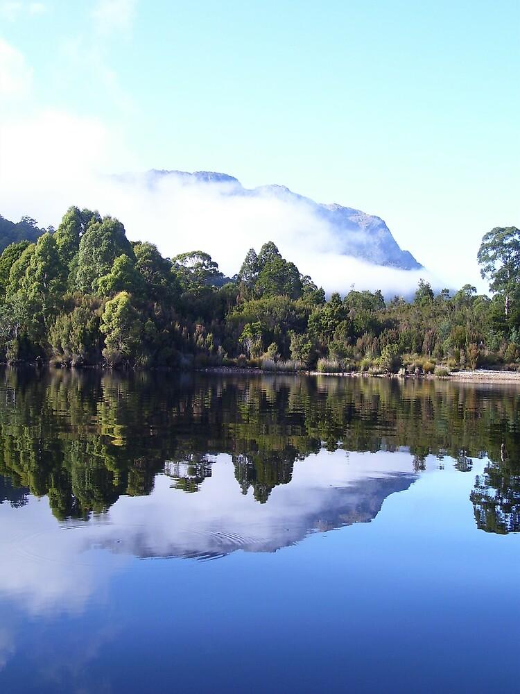reflections of Mt Farrell, on Lake Rosebery, Tullah, Tasmania by gaylene
