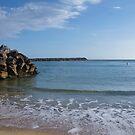 Sea Walls - Dunbogan NSW. by Liz Worth