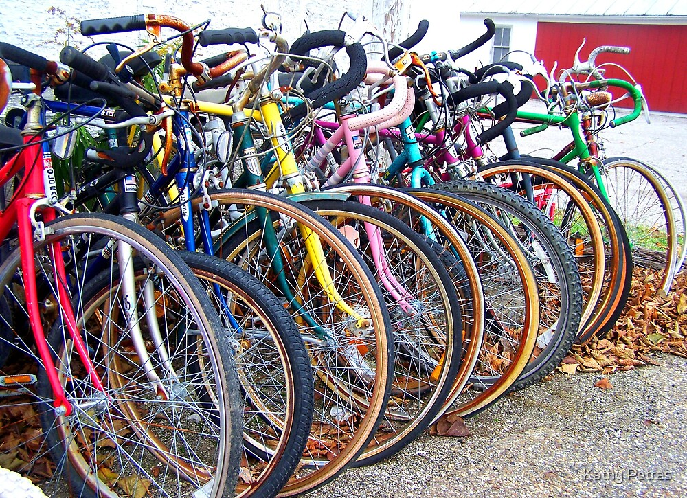 bikes by Kathy Petras