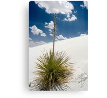 Alone with the Sky Canvas Print