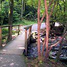 The Bridge by HGB21