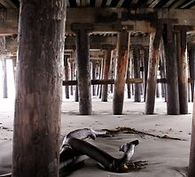 Under the Boardwalk by friartuck