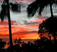 Tropical Sunset by Peter Murphy