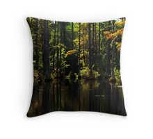 Swamp lights and shadows Throw Pillow