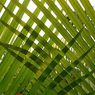 Weave: Heartland Retreat by Sally Kate Yeoman