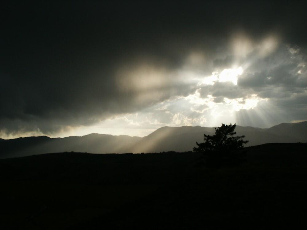 Light Over Dark by thetree1004
