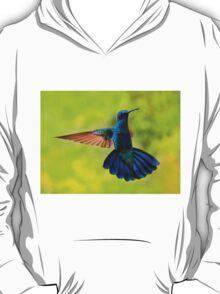Hummingbird Splendour T-Shirt