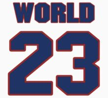 Basketball player Metta World jersey 23 by imsport