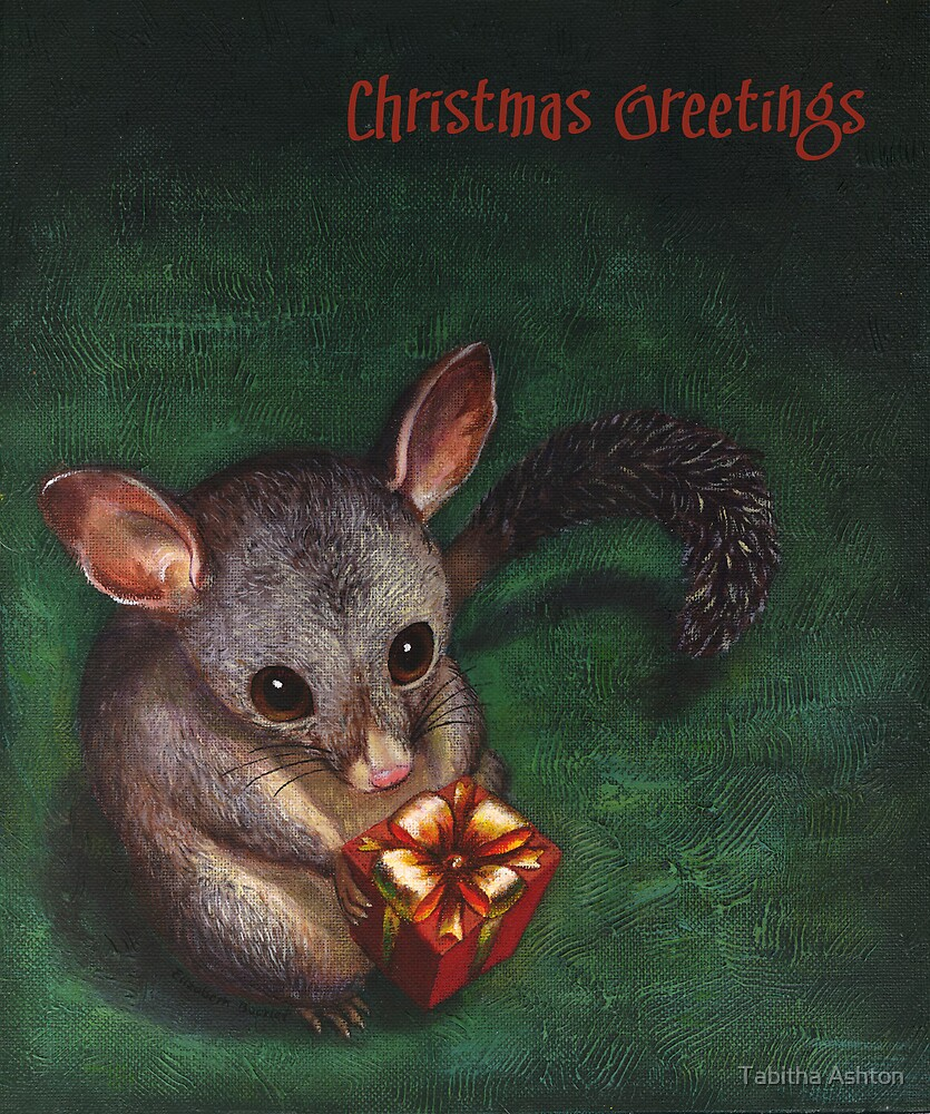 Christmas Possum by Tabitha Ashton