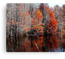 Late November Canvas Print