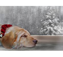 Dreamin' of a White Christmas 2 Photographic Print