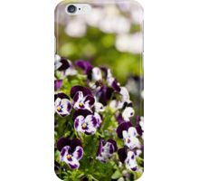 Purple white Viola or pansy variegated flowers  iPhone Case/Skin