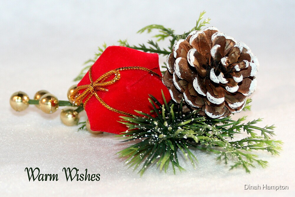 Warm Wishes by Dinah Hampton