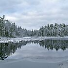 Winter Reflections by Bethany Helzer