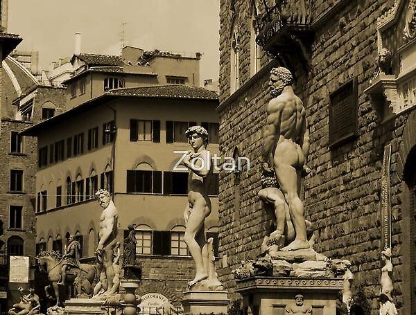 Piazza della Signoria - Firenze by Zoltan