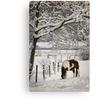 Paint in the Snow Canvas Print