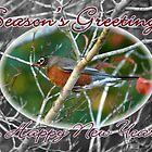 Season's Greetings & Happy New Year Card ~ Robin by silverdew