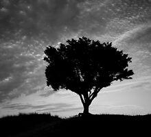 Solitary Standing by RKastl