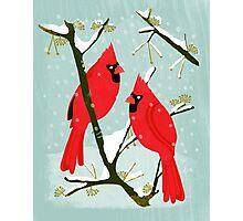 Winter Cardinals by Andrea Lauren  Photographic Print