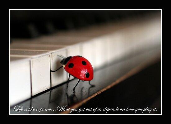 The piano by Ellen van Deelen
