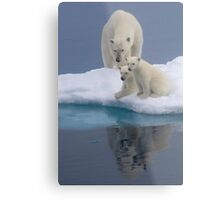 Polar Reflections Metal Print