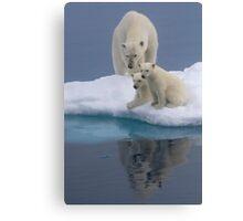 Polar Reflections Canvas Print