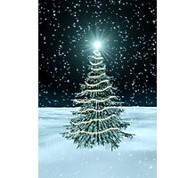Christmas Tree on Snowy Landscape Photographic Print