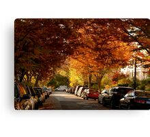 foliage in the city Canvas Print