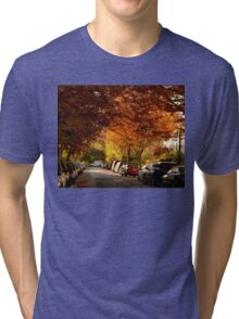 foliage in the city Tri-blend T-Shirt