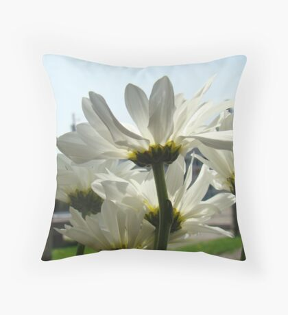 Angle on dasies Throw Pillow