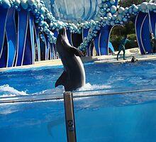 Dancing dolphin by Albert1000