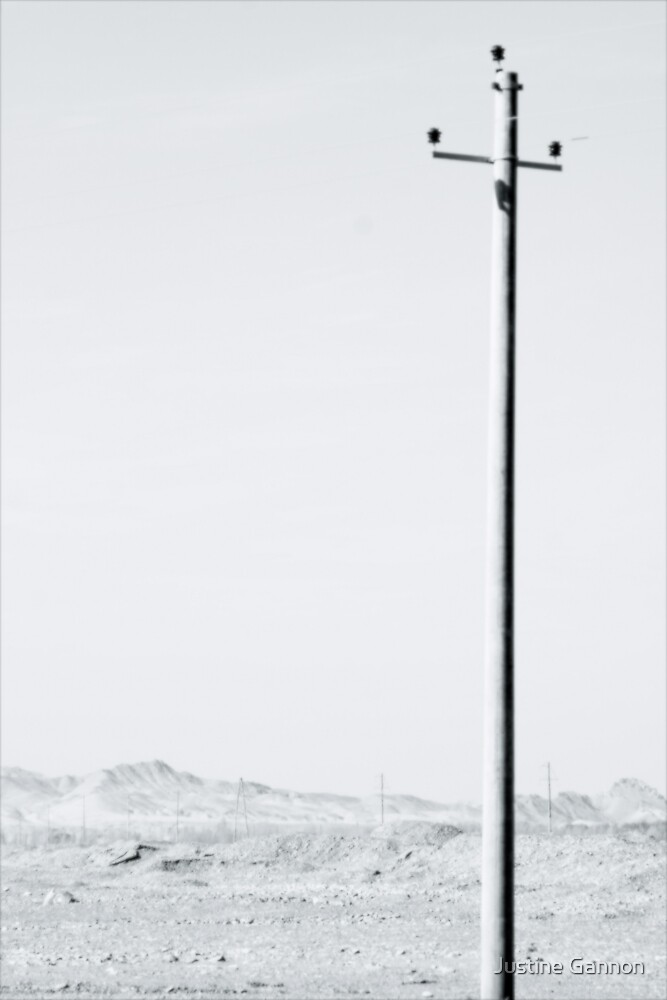 Lone Pole by Justine Gannon