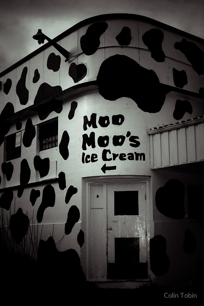 Moo Moo's by Colin Tobin