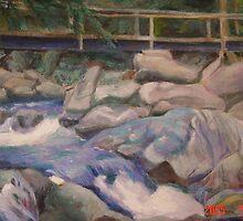 Rushing Waters by ralphvog