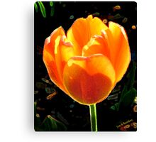 rouge d'or Canvas Print