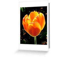 rouge d'or Greeting Card