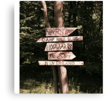 Which path will you take? Canvas Print