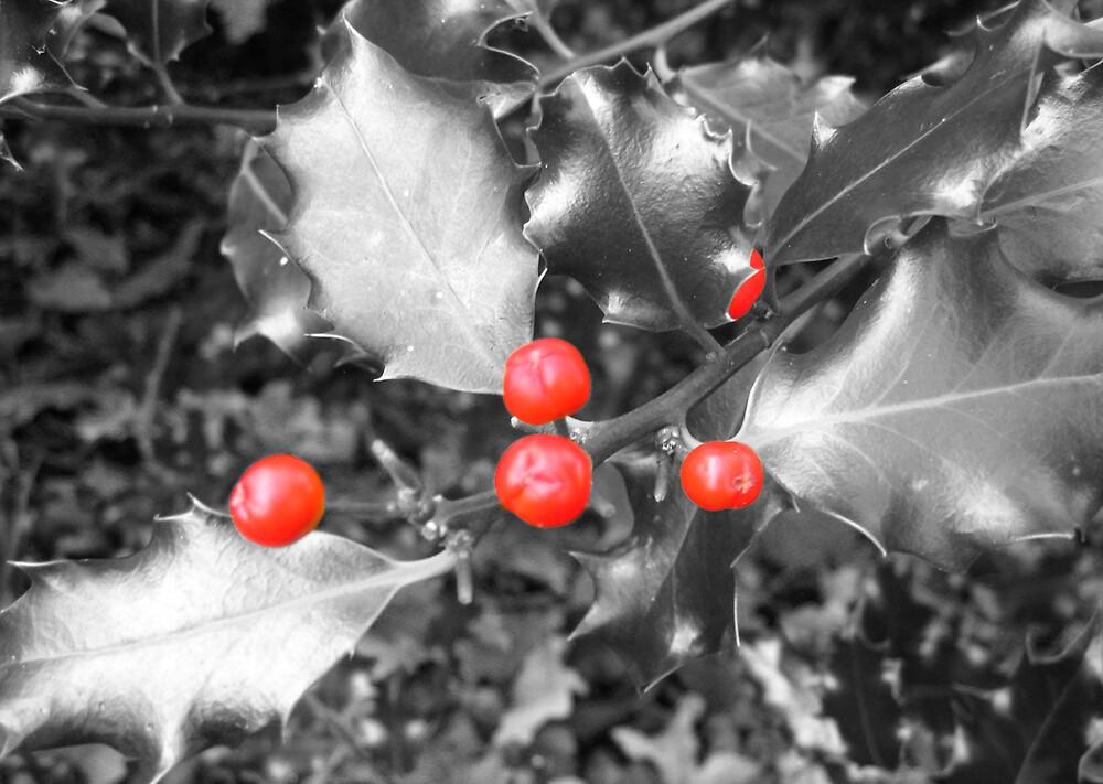 Holly by benni6634
